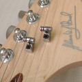 Custom telecaster head